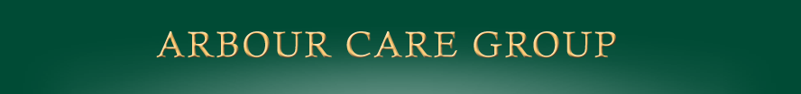 arbour care group